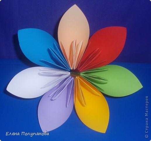 цветок цветик-семицветик картинки