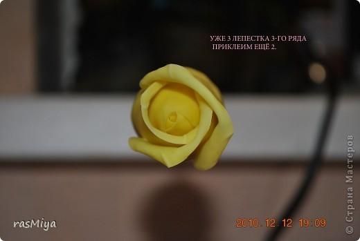 МК буду выкладывать частями (жаль загружается фото медленно), здесь покажу, как слепить сам цветок, в след. записях-чашелистики, листья, стебель, покраска.. Фото 14