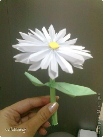 Флористика Оригами: Цветы из бумаги Бумага.  Фото 7.