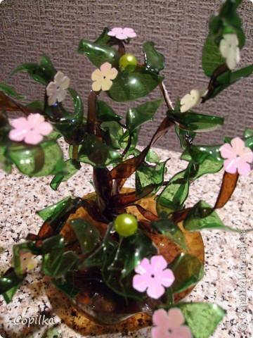 Пробовала разные техники изготовления Бонсай из пластика.Эта веточка-из отдельных листиков,ствол обмотан капроновыми колготками.. Фото 12