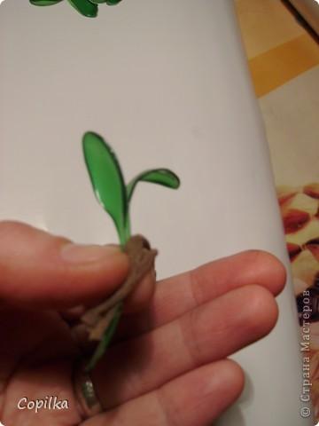 Пробовала разные техники изготовления Бонсай из пластика.Эта веточка-из отдельных листиков,ствол обмотан капроновыми колготками.. Фото 7