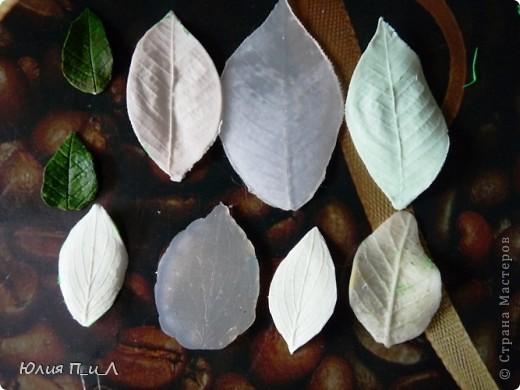"""Материалы и инструменты Лепка: О """"зелени"""" и """"молдах"""" для лепки Фарфор холодный. Фото 8"""