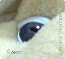 Игрушка, Мастер-класс, Шитьё, : Глаза зверика.МК . Фото 3