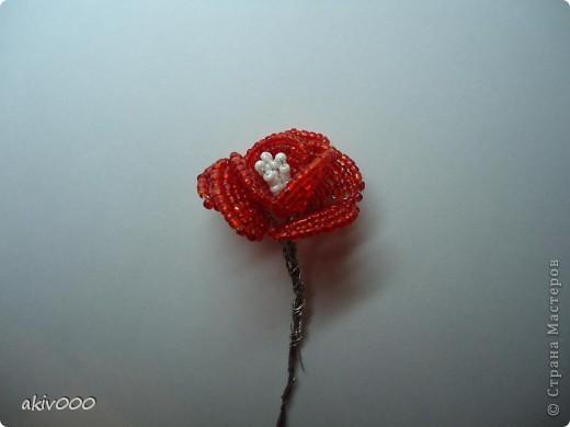 ...Розы из бисера + мини МК Бисер, Проволока День рождения.  Фото 12.