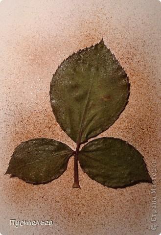 Мастер-класс Рисование и живопись: Аэрография для ребят Акварель, Материал природный. Фото 8