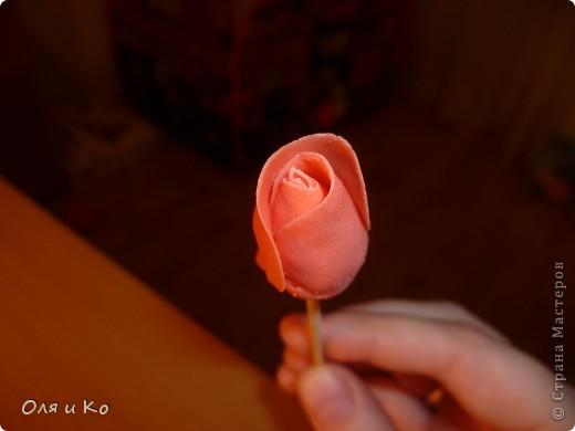 Мастер-класс,  Лепка, : Лепим соленую розу. Продолжение Тесто соленое 8 марта, . Фото 13