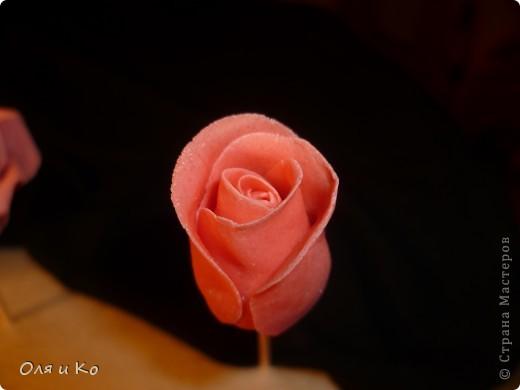 Мастер-класс,  Лепка, : Лепим соленую розу. Продолжение Тесто соленое 8 марта, . Фото 15