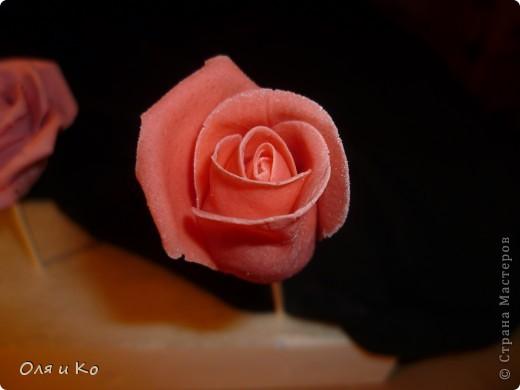 Мастер-класс,  Лепка, : Лепим соленую розу. Продолжение Тесто соленое 8 марта, . Фото 18