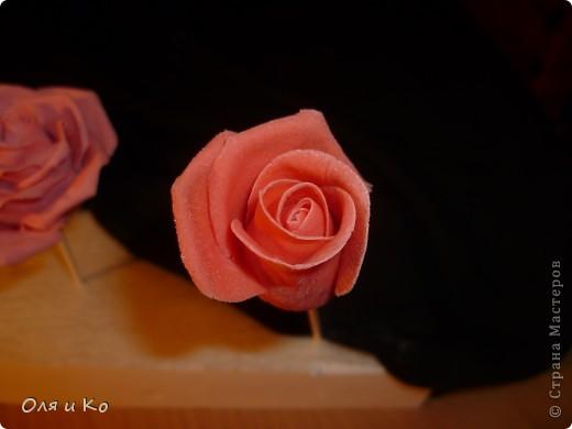 Мастер-класс,  Лепка, : Лепим соленую розу. Продолжение Тесто соленое 8 марта, . Фото 19