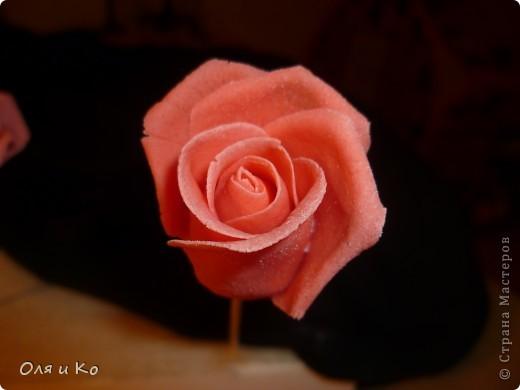 Мастер-класс,  Лепка, : Лепим соленую розу. Продолжение Тесто соленое 8 марта, . Фото 20