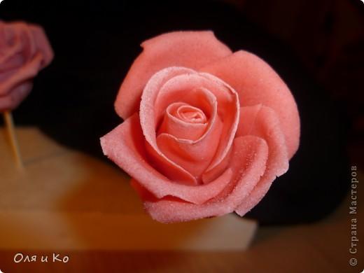 Мастер-класс,  Лепка, : Лепим соленую розу. Продолжение Тесто соленое 8 марта, . Фото 22