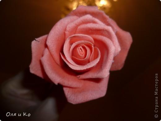 Мастер-класс,  Лепка, : Лепим соленую розу. Продолжение Тесто соленое 8 марта, . Фото 30