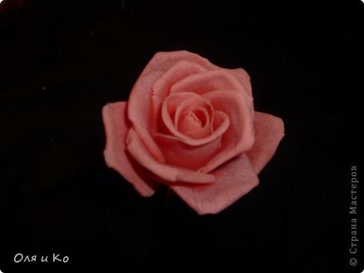 Мастер-класс,  Лепка, : Лепим соленую розу. Продолжение Тесто соленое 8 марта, . Фото 33
