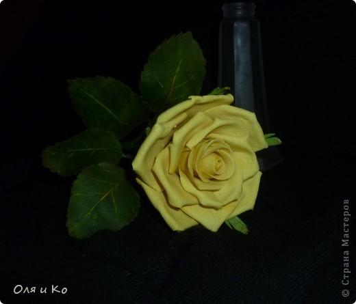 Мастер-класс, Материалы и инструменты,  Лепка, : Листочки розы из соленого теста Тесто соленое 8 марта, .<br /> <center>