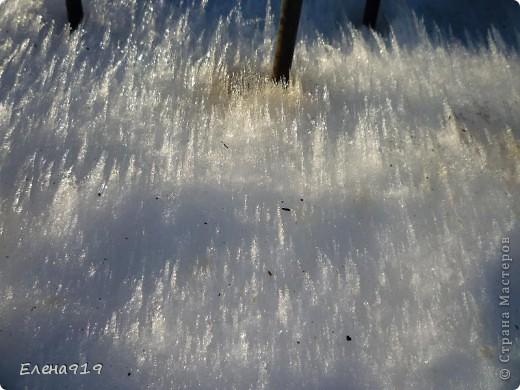 Фоторепортаж как мы корюшку ловили фото 9