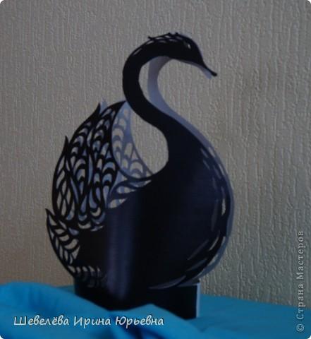 Поделка, изделие Вырезание: Лебедь чёрный, лебедь белый... Бумага Отдых. Фото 1