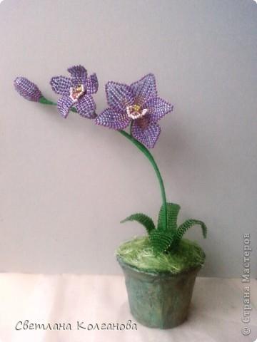 Орхидея из бисера Бисер.