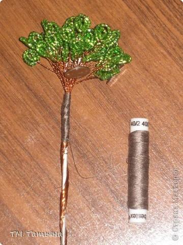Мастер-класс Бисероплетение: Денежное дерево.(М К) Бисер.