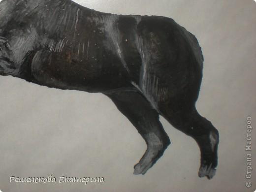 Картина, панно, Мастер-класс, Рисование и живопись, : Чёрный конь. Соленое тесто. Гуашь, Клей, Материал природный . Фото 6