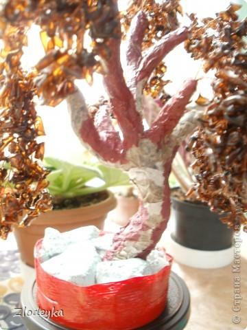 Мастер-класс,  Моделирование, : Моё первое деревце из плостиковой бутылки.МК. Бутылки . Фото 18