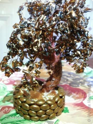 Мастер-класс Моделирование, Плетение: Моё первое деревце из пластиковой бутылки.МК. Бутылки, Гипс, Проволока. Фото 1