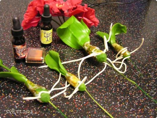 Мастер-класс Лепка: МК по лепке орхидеи. Фарфор холодный. Фото 25