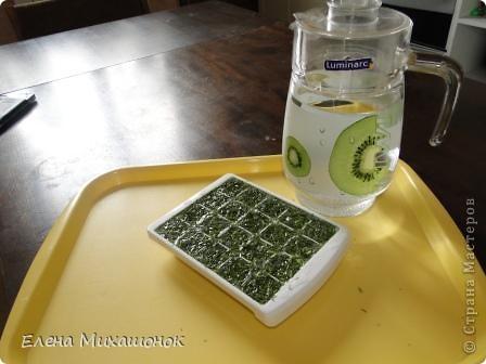 Готовим кубики льда с зеленью для супчиков... Нам понадобится емкость для льда... и зелень (укроп, петрушка). Фото 3