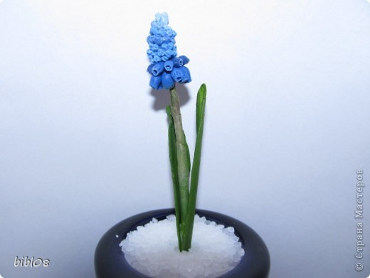 Мастер-класс Лепка: Мастер-класс - Мускари Фарфор холодный. Фото 1