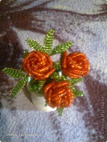 Поделка, изделие Бисероплетение: розы от начинающей+схемы Проволока.