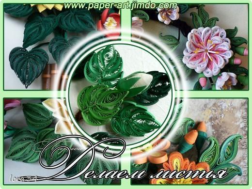 Как мы знаем красивые цветы - это очень важно в работе и тем не менее очень важна и красивая листва, здесь я Вам расскажу как сделать такие красивые листочки . . Фото 1