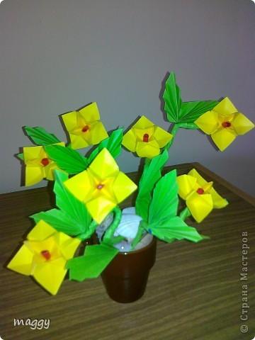 Поделка, изделие,  Оригами модульное, : Origami models Бумага . Фото 6