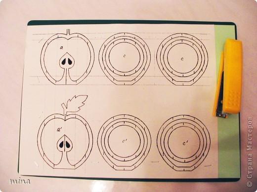 Мастер-класс, Вырезание, : Яблочко. МК. Бумага . Фото 6