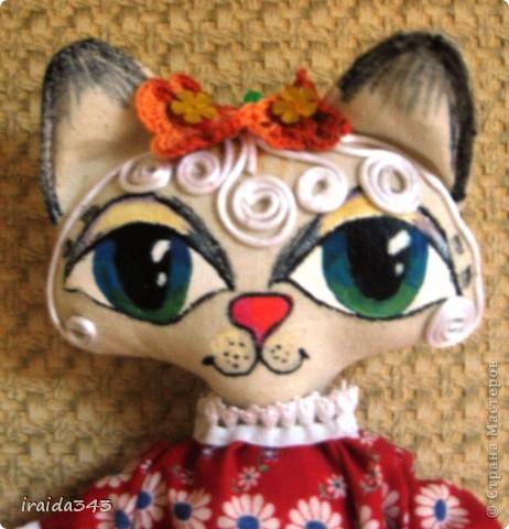 Многие шьют бермудскую кошку. Решила преобщиться к этому творчеству и я.. Фото 1