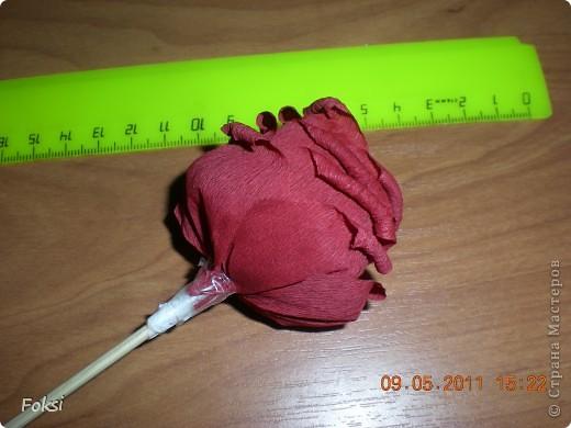 Мастер-класс, Свит-дизайн,  Бумагопластика, : Скромненький сладкий букет для хорошего человека.мини мк роз из гофробумаги Бумага гофрированная День рождения, . Фото 10
