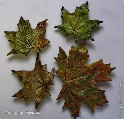 Мастер-класс,  : Осенние весенние листья Воск, Гипс, Краска, Листья