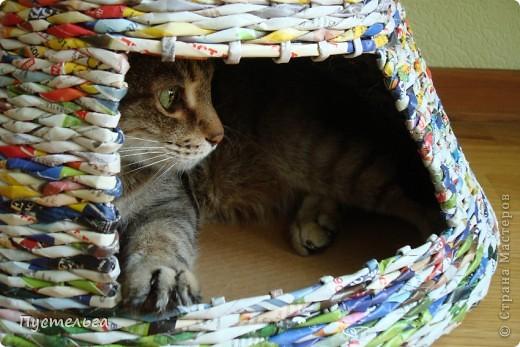 Мастер-класс, Поделка, изделие Плетение: Котькин дом Бумага газетная. Фото 11
