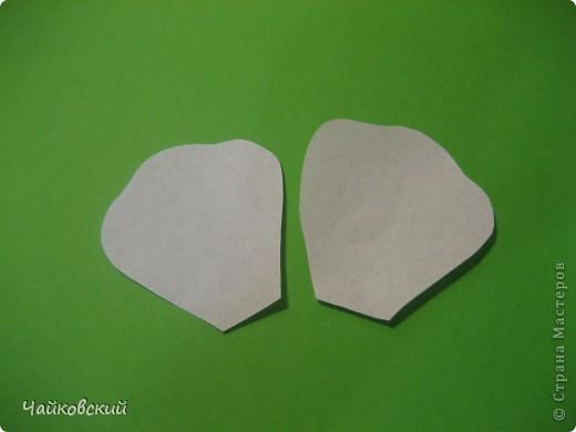 Мастер-класс Моделирование, Валяние (фильцевание), Шитьё: МК белый мак из органзы Ткань. Фото 2
