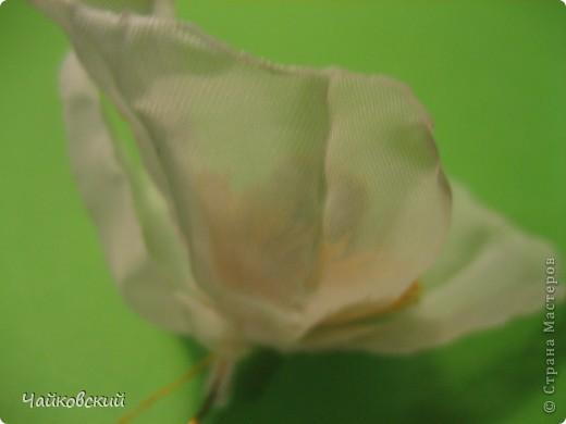 Мастер-класс Моделирование, Валяние (фильцевание), Шитьё: МК белый мак из органзы Ткань. Фото 51
