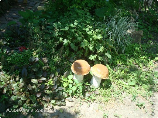 Мои первые грибочки из цемента!!!. Фото 9