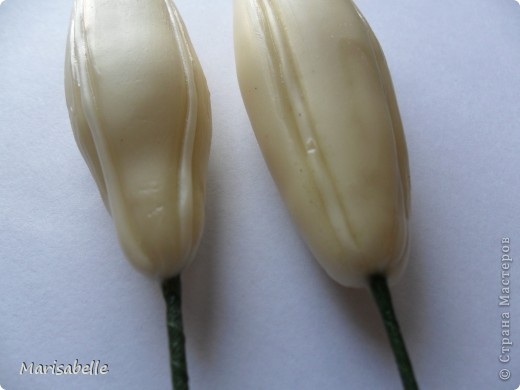 Поделка, изделие, Флористика Лепка: Лилия в кокосовой скорлупе Фарфор холодный. Фото 26