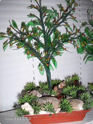 Мастер-класс, Поделка, изделие: Цветущее дерево из пластиковых бутылок Бисер, Бутылки, Нитки, Проволока, Ракушки. Фото 1