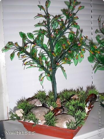 Мастер-класс, Поделка, изделие: Цветущее дерево из пластиковых бутылок Бисер, Бутылки, Нитки, Проволока, Ракушки. Фото 19