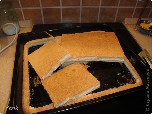 Это мой первый МК, эксперементировала с фото, так что за качество прошу прощения заранее. когда-то я купила сливки для взбивания и для их пробы решила испечь самый простой бисквит, еще у меня остались киви, попробовала со сливками, получилось вкусно. Когда началась клубника, добавила и ее, а однажды, когда делала такой торт у меня оказался творог под рукой, так и родился данный рецепт.. Фото 5