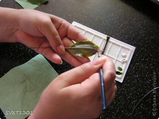 И так продолжим! Если вы не ленились и выполнили домашнее задание, то сначала займёмся подготовкой листиков. У яблони обратная сторона листьев белёсая , следовательно её необходимо закрасить белой краской. Берём на кисть ОЧЕНЬ маленькое количество краски и растушёвываем по листику (лишнее можно стереть салфеткой). Фото 1