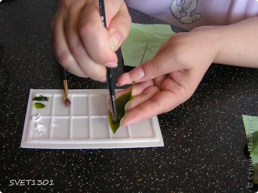И так продолжим! Если вы не ленились и выполнили домашнее задание, то сначала займёмся подготовкой листиков. У яблони обратная сторона листьев белёсая , следовательно её необходимо закрасить белой краской. Берём на кисть ОЧЕНЬ маленькое количество краски и растушёвываем по листику (лишнее можно стереть салфеткой). Фото 2
