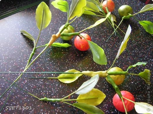 И так продолжим! Если вы не ленились и выполнили домашнее задание, то сначала займёмся подготовкой листиков. У яблони обратная сторона листьев белёсая , следовательно её необходимо закрасить белой краской. Берём на кисть ОЧЕНЬ маленькое количество краски и растушёвываем по листику (лишнее можно стереть салфеткой). Фото 14