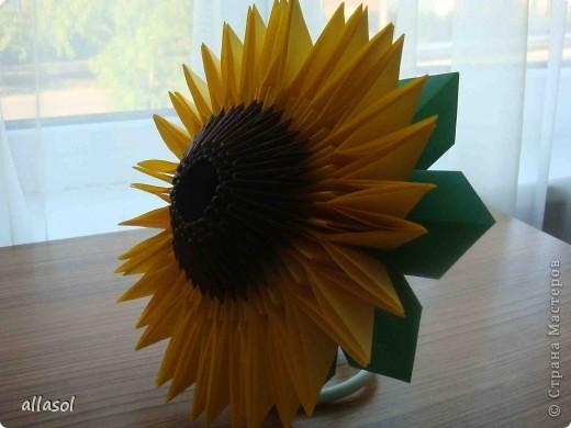 Мастер-класс Оригами, Оригами модульное: Цветы (и не только) Бумага, Бусинки, Проволока Начало учебного года. Фото 1