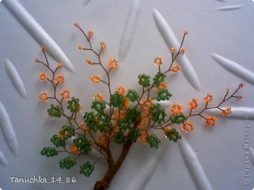 """Мастер-класс Бисероплетение: Мастер-класс """"Весеннее деревце"""" Бисер. Фото 6"""