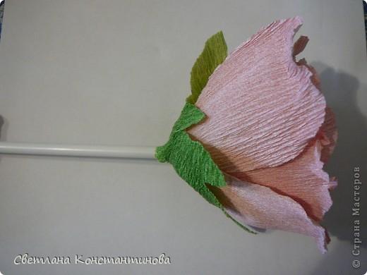Мастер-класс, Свит-дизайн Бумагопластика: МК по изготовлению роз в свит -дизайне Бумага гофрированная, Бусинки. Фото 18