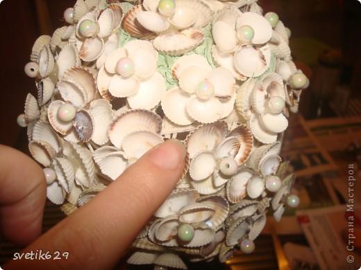 Ракушки топиарий своими руками мастер класс фото 693